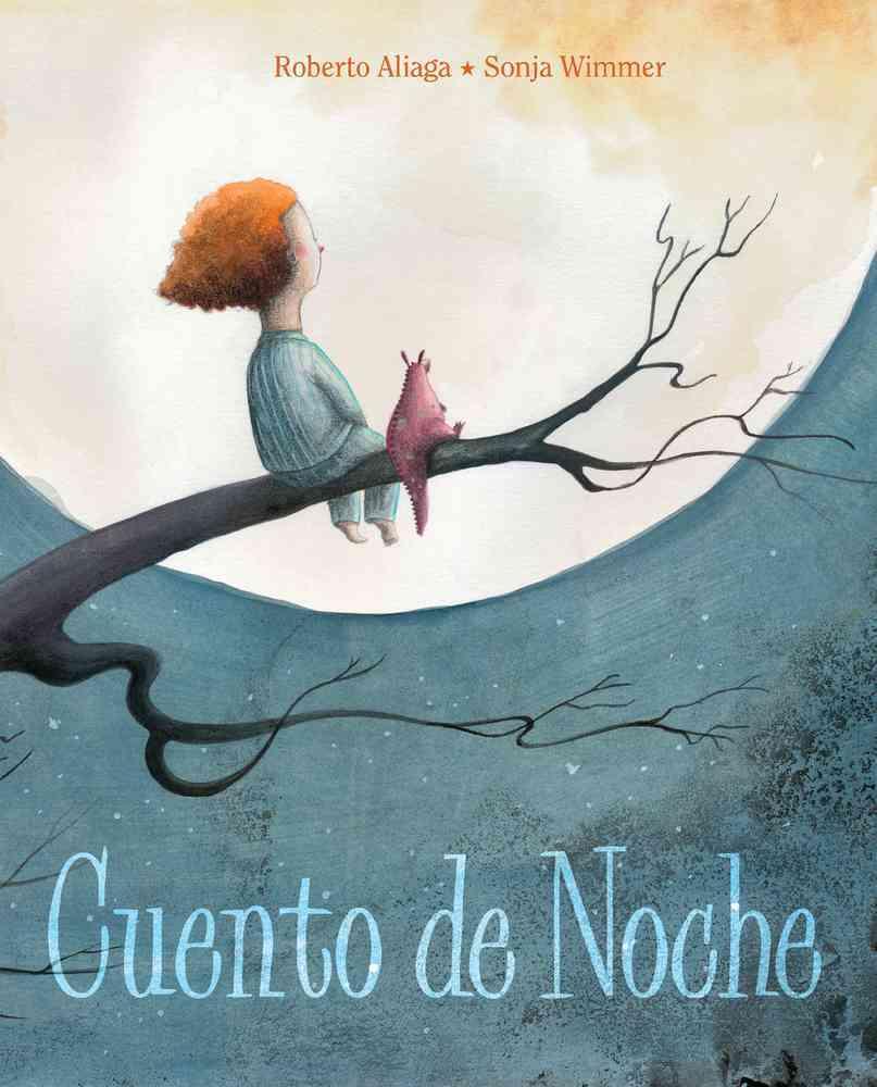 Cuento de Noche / A Night Time Story By Aliaga, Roberto/ Wimmer, Sonja (ILT)